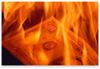 Burning_money_pic