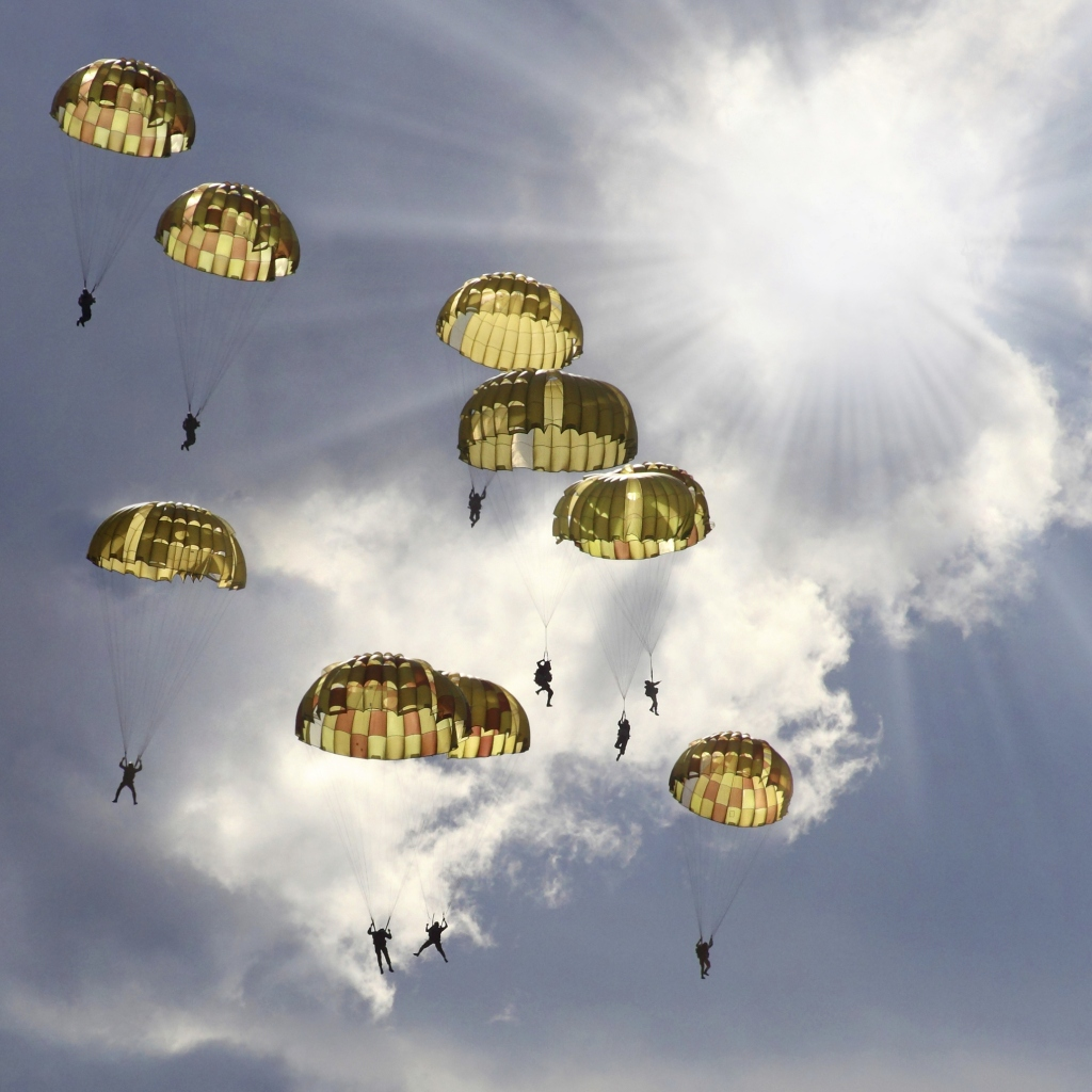 The skydivers.