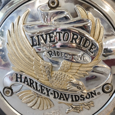 Harley Davidson Ride to Live