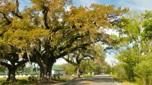 Houma-Thibodaux, Louisiana