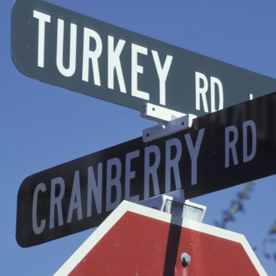 Turkey and Cranberry
