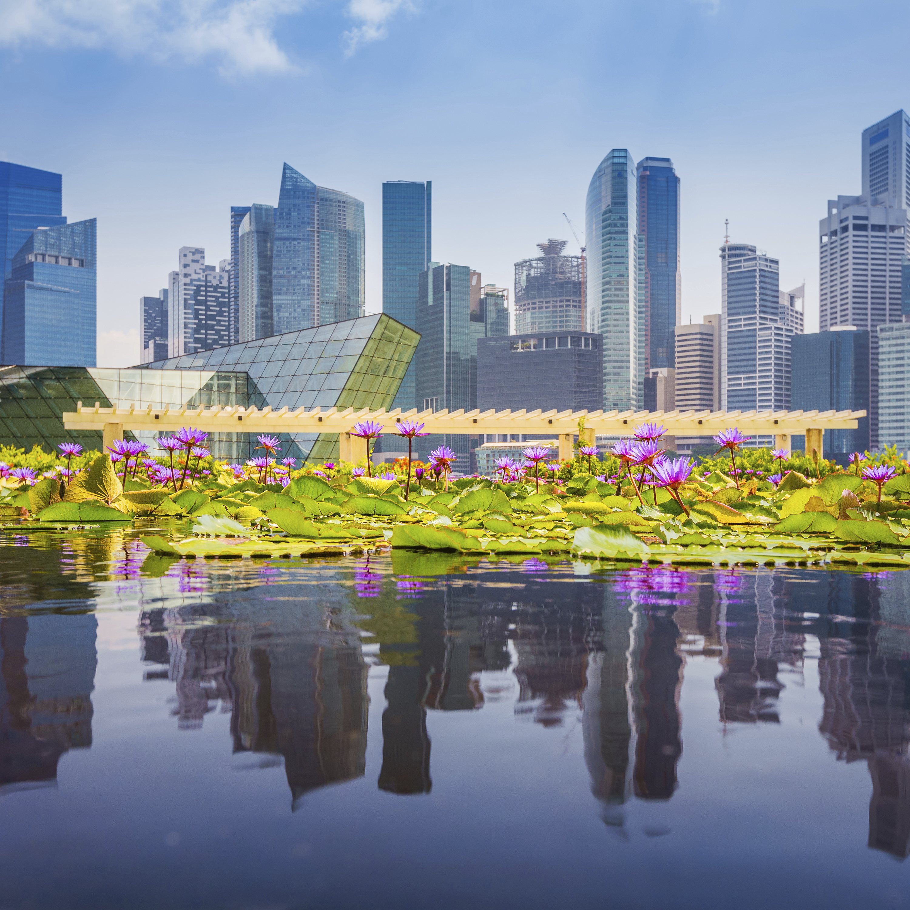 Peddinghaus Industry Singapore: Why Singapore Is The Best Country For Business