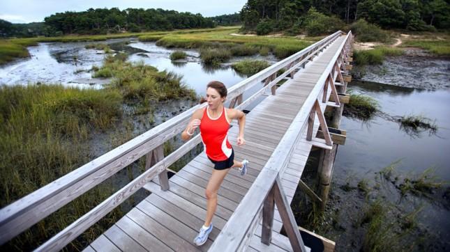 Cape Cod, Massachusetts (runner)