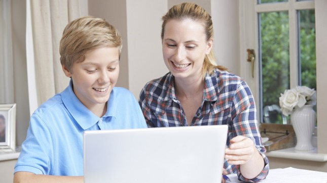 Educational support service (tutor)