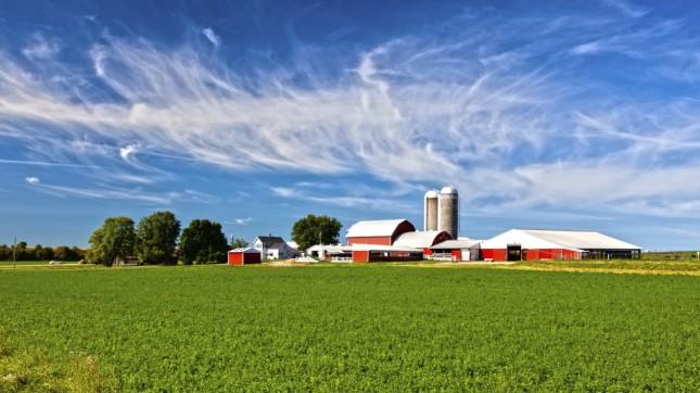 Wisconsin (farm)