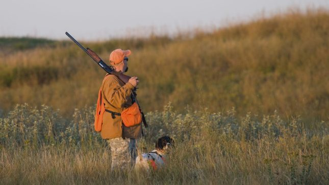 Hunting, Hunter and dog, North Dakota
