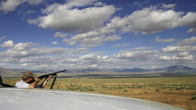 Shooting clay pigeons, Nevada