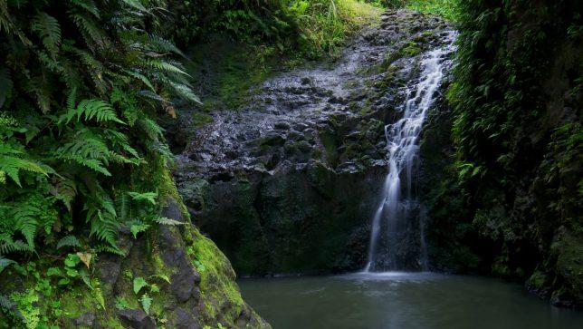 Maunawili Falls.