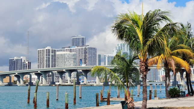 Miami city tropical view, Florida