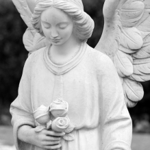 angel statue holding roses cemetery death