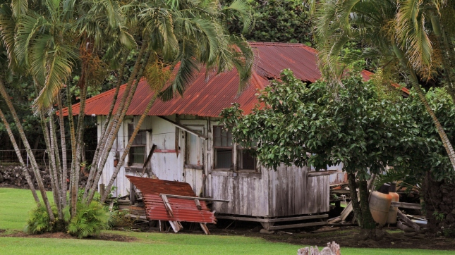 Hawaii old abandoned shack