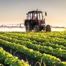 spraying soybeans