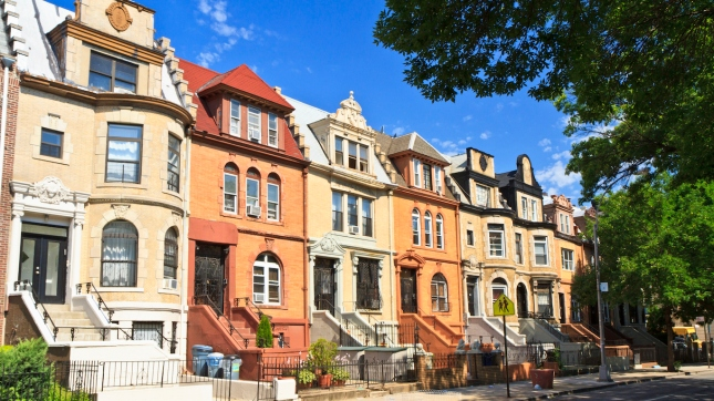 Crown Heights Townhouses, Kings County, New York