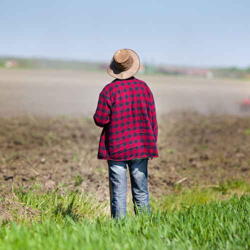 Farmer looking at tractor on field