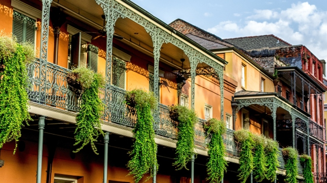 Balcony with Plants #12 French Quarter New Orleans, Louisiana