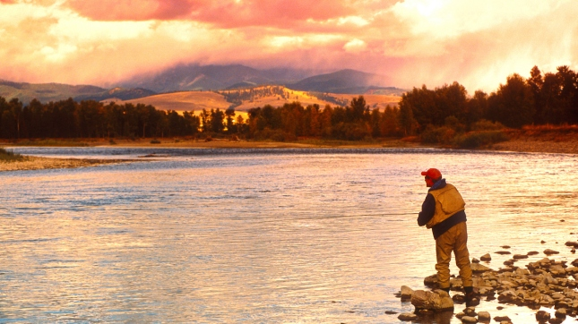 Man Fishing on the Big Blackfoot River in Montana