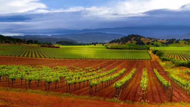 Napa County, California