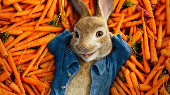 39 most famous bunnies of all time  7 wall st