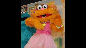 The Most Popular Characters In Sesame Street S History